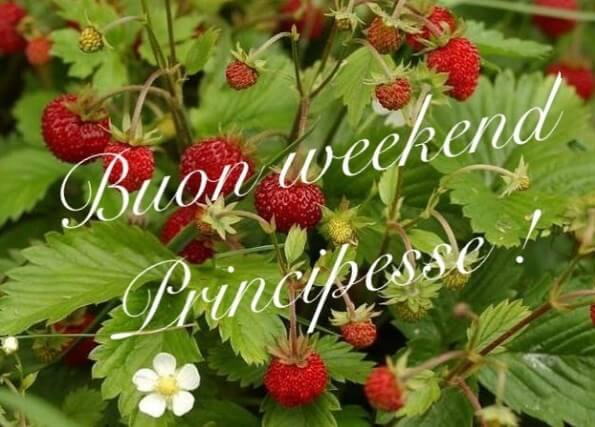 cartoline di buon weekend